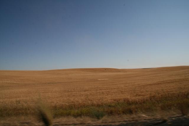 Mijlen en mijlenlange graanvelden