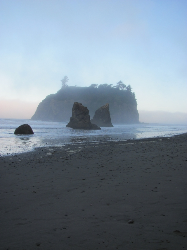 Ruby Beach bij mist