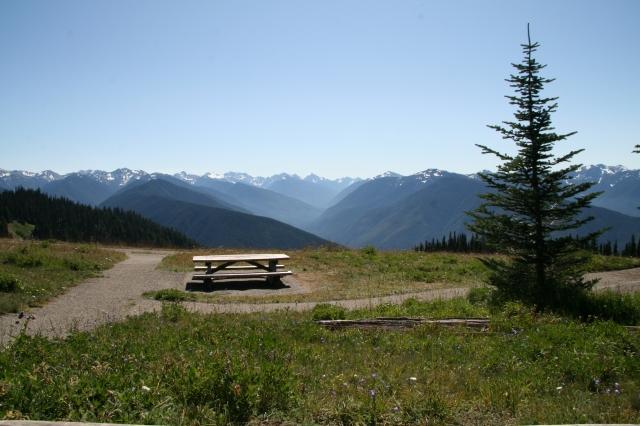 Uitzicht bij picknicken in Hurricane Ridge