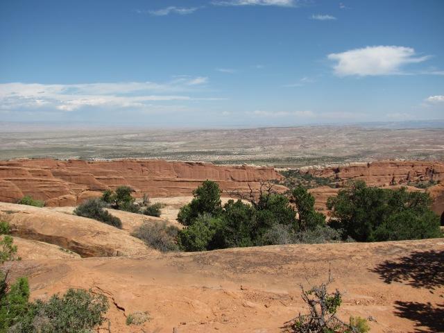 Overzicht landschap